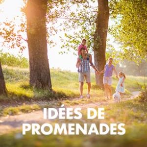 Idées de promenades